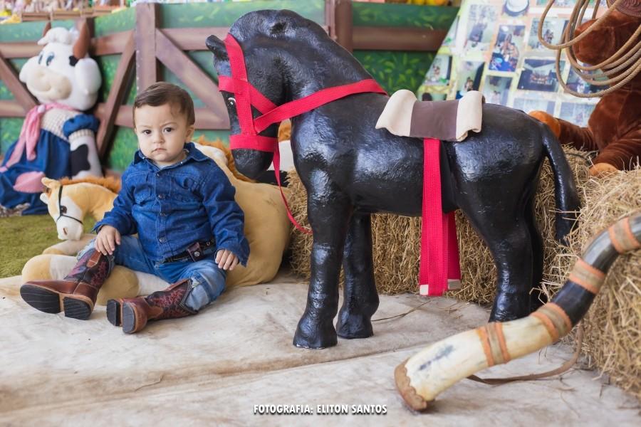 Aniversário de 1 aninho - Fazendinha do Rafael