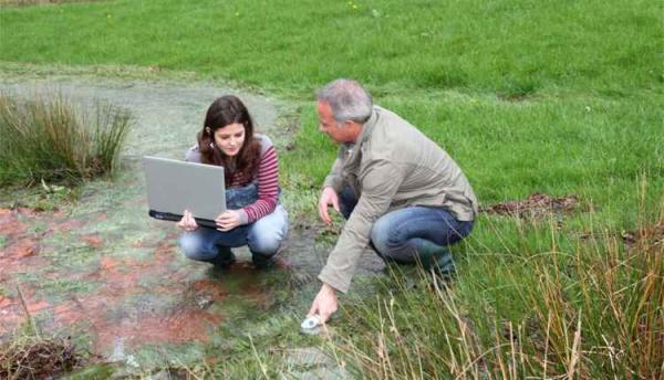 Dia da Natureza: conheça profissões para quem deseja cuidar do meio ambiente