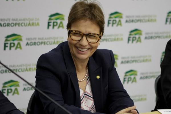 Tereza Cristina quer acabar com inspeção diária em frigoríficos do país