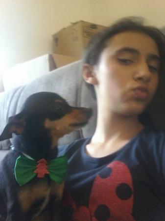 Família oferece recompensa por cachorrinha que desapareceu em Deodápolis