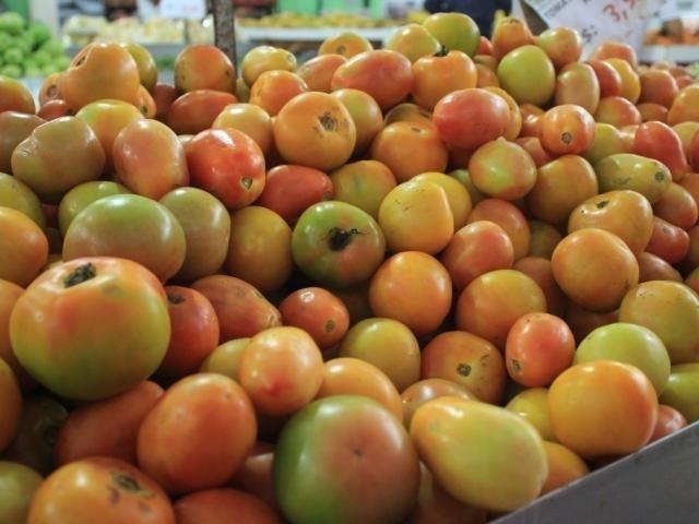Depois de queda no preço em fevereiro, preço do tomate aumentou 10,12% em março (Foto/Arquivo)