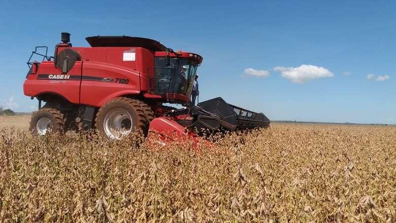 RURAL MS fecha safra com produção de 8,8 milhões de toneladas de soja 15 abril 2019 - 08h24Por G 1  MS colheu nesta temporada 8,800 milhões de toneladas de soja; se fosse país seria o sétimo maior produtor mundial - Crédito: Anderson Viegas/G1 MS