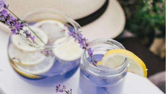 Limonada de lavanda com 5 ingredientes controla ansiedade e diminui o estresse