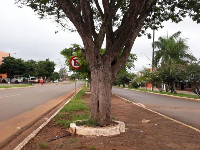 Linha internacional entre Brasil e Paraguai. Do lado direito, Coronel Sapucaia e do outro Capitán Bado. (Foto: Mayara Bueno).