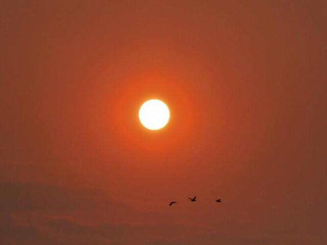 Em Campo Grande, o dia amanheceu nesta segunda-feira com sol em tom alaranjado por causa do tempo seco. (Foto: Rodrigo Kawaminami)