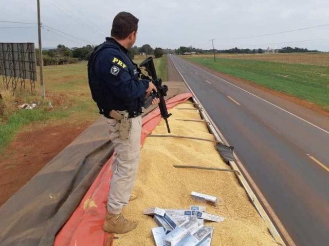 Uma das cargas foi encontrada sob camada de farelo de soja (Foto/Divulgação)