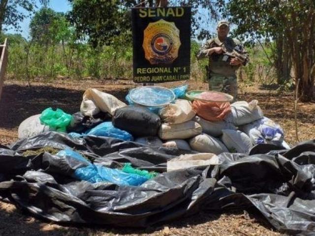 Agente da Senad em frente aos fardos de maconha encontrados em um dos acampamentos (Foto: Divulgação)