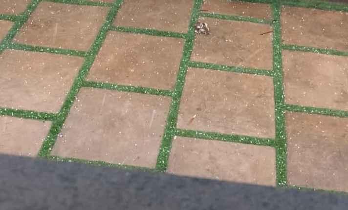 Consegue ver os cristais de granizo na imagem? | Foto: WhatsApp | Do Leitor