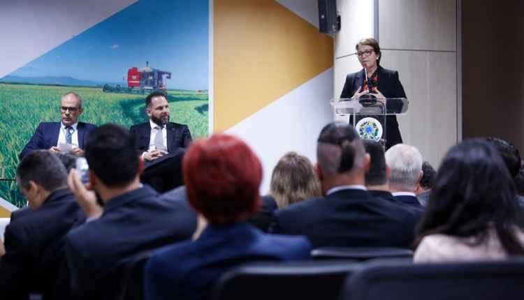 Tereza Cristina cria grupo para debater e fomentar mercado brasileiro de bebidas