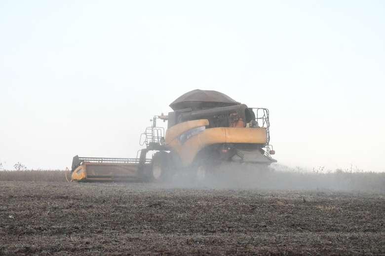 Colheita ainda está em 10,3% da área total cultivada, de 3,163 milhões de hectares - Crédito: Hedio Fazan/Dourados News