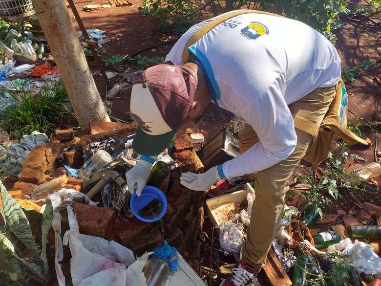 Dourados atinge alta incidência de dengue e registra 16 casos de chikungunya em sete dias
